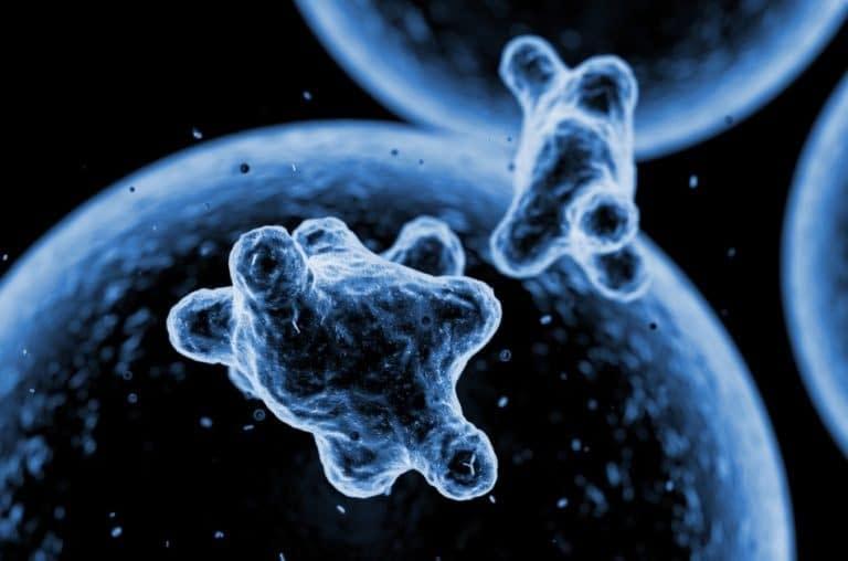 agenti patogeni