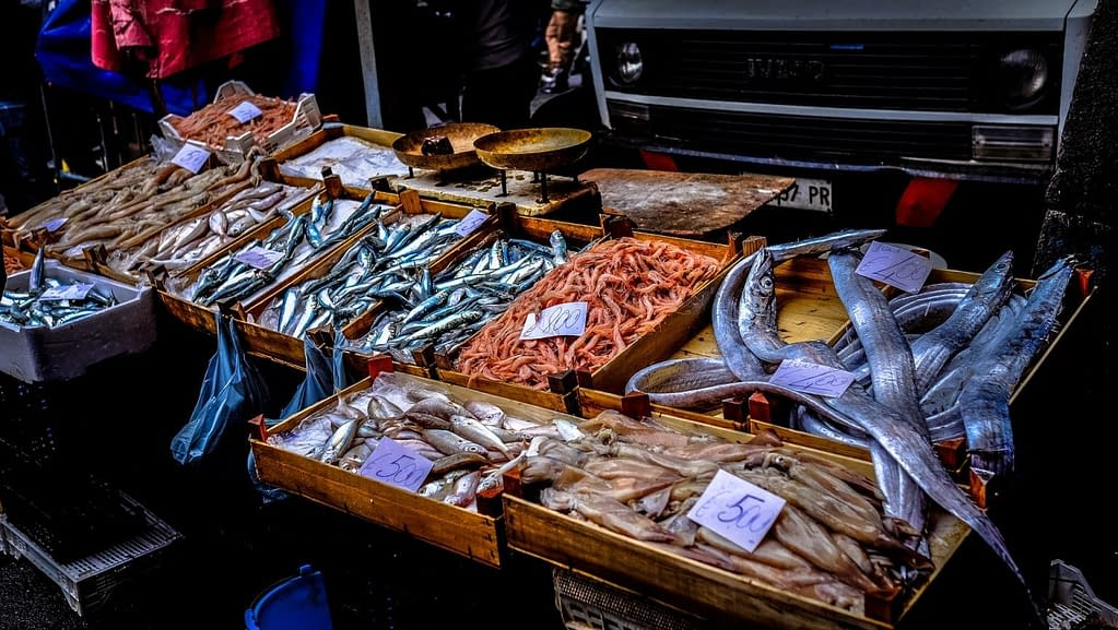 mercato umido pesce