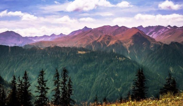 montagne pini panorama