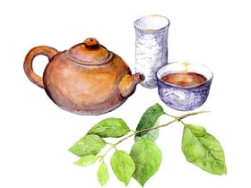 tè teiera