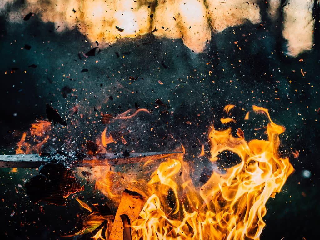 fuoco braci bosco emozioni organo