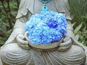 statua fiori