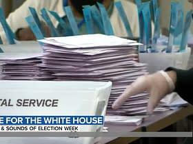 elezioni presidenziali schede conteggio