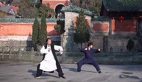 arte Kung Fu danza cinese persone tempio