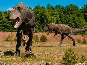 dinosauri asteroide