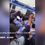 pcc vieta lingua mongola
