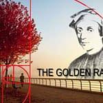 albero rapporto aureo Sequenza Fibonacci proporzione divina