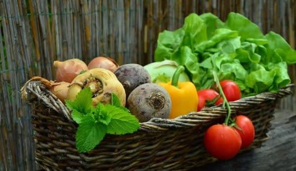 verdura cruda cesto longevità
