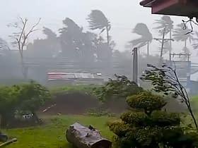 tifone Goni Manila