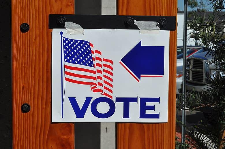 votazioni USA pannello