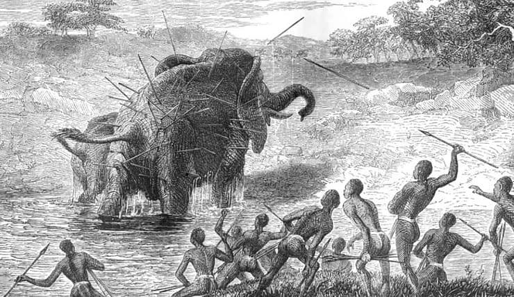 elefanti cacciatori lance paleo dieta