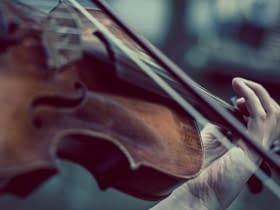 violinista violino archetto