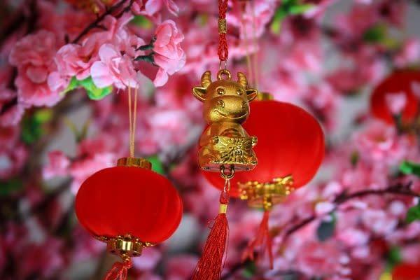 nuovo anno cinese 2021 il bue