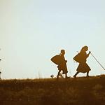 'TERRA DEL MIELE': L'INTIMA RELAZIONE TRA L'APICOLTORE E LE SUE API