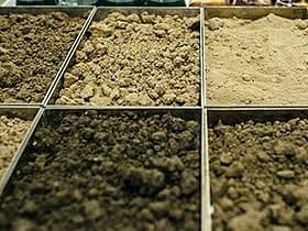 suolo quantità carbonio